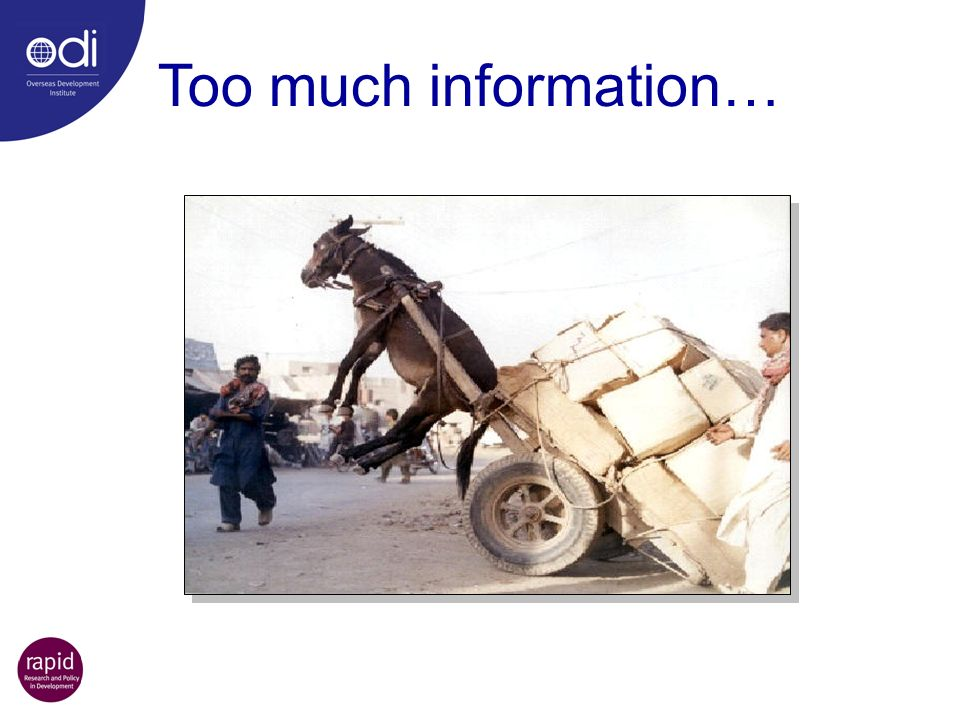 Too much information… Oh no, poor donkey…
