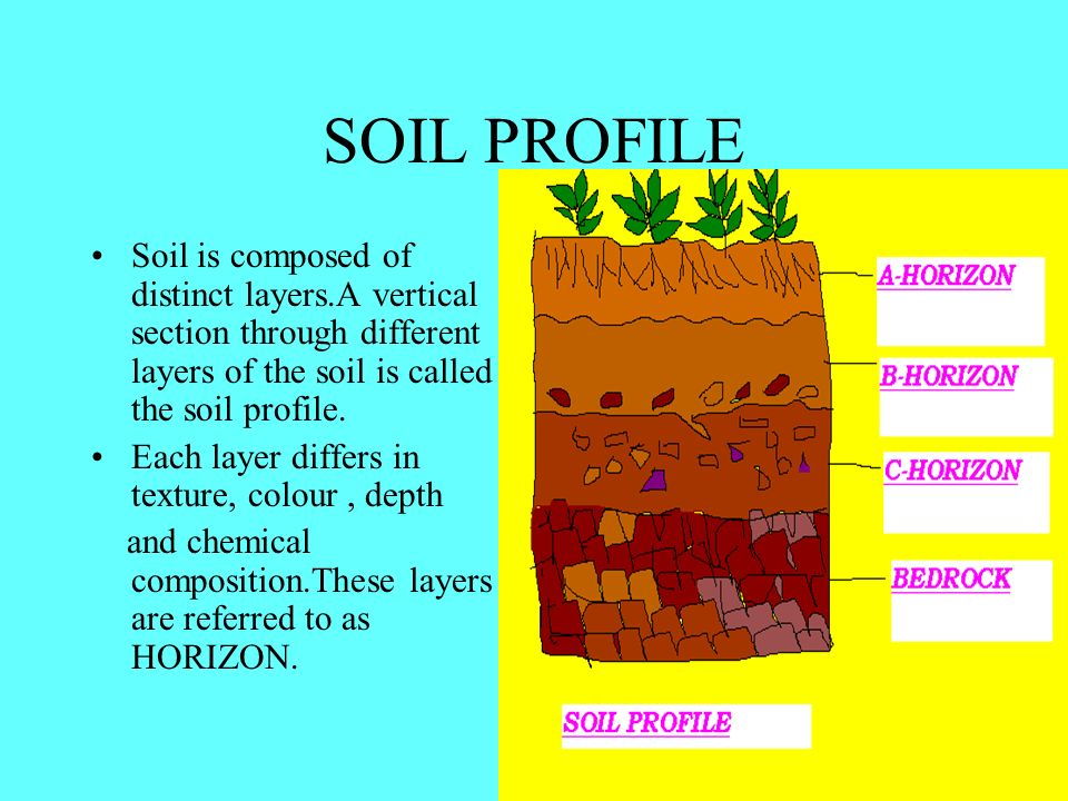 Soil what is soil ppt video online download for Soil profile video