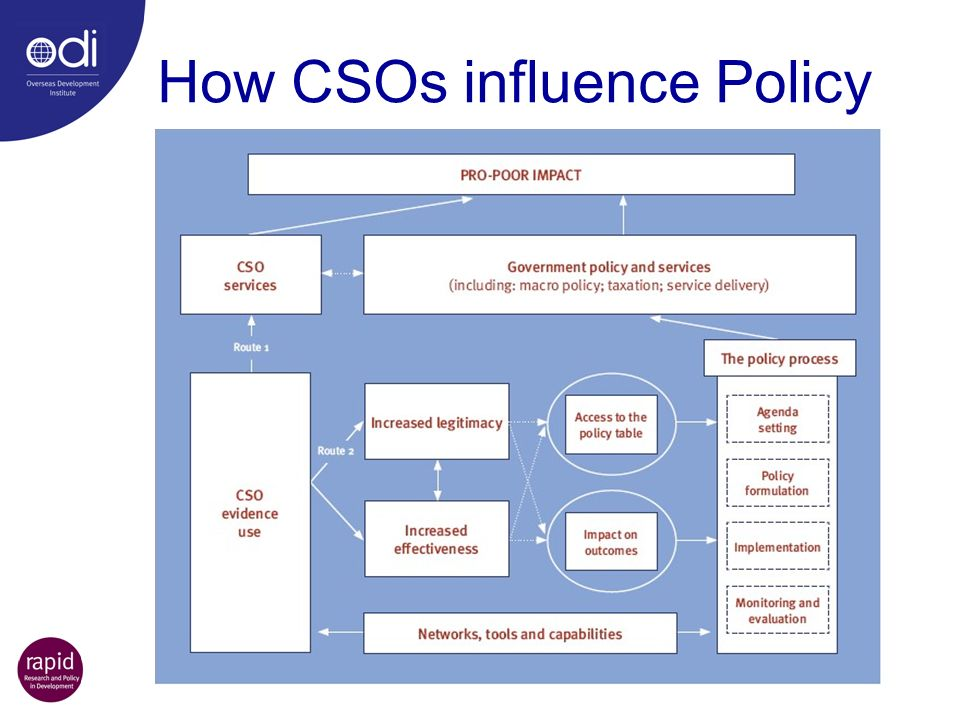 How CSOs influence Policy