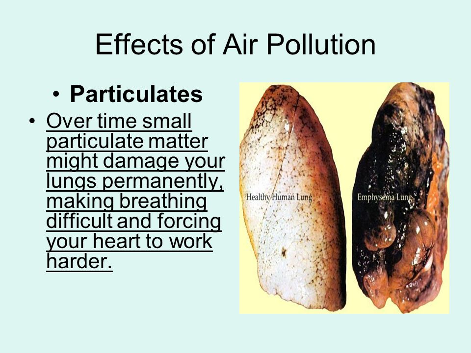 effects of air pollution Did you know that air pollution can happen both inside buildings and outdoors get the facts how air pollution effects your health.