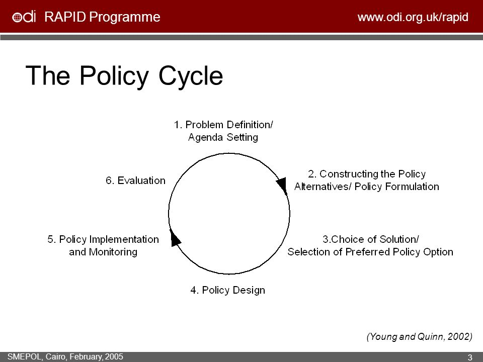 The Policy Cycle (Young and Quinn, 2002)