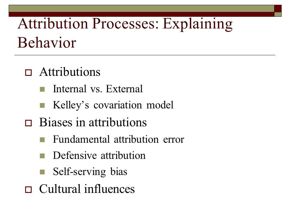 Example Of The Fundamental Attribution Error Custom Paper Academic