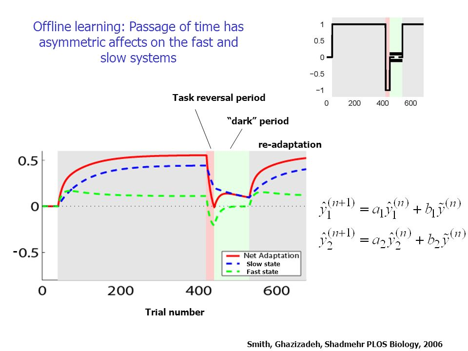 Offline learning: Passage of time has asymmetric affects on the fast and slow systems