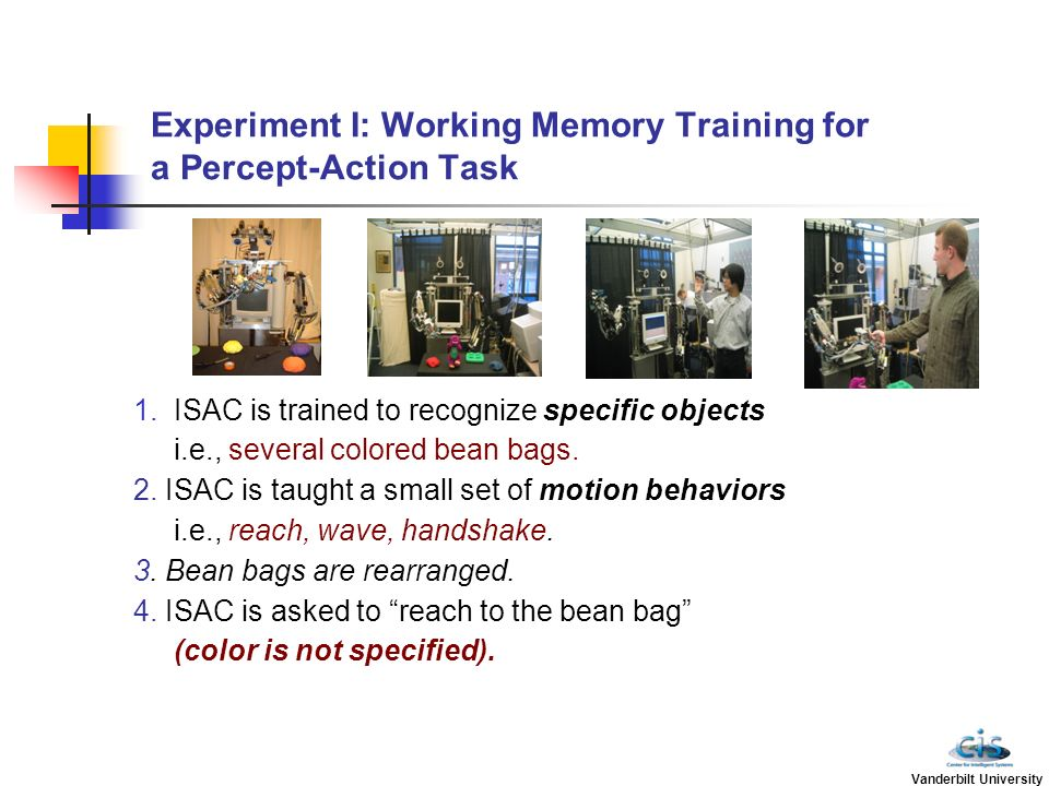 Experiment I: Working Memory Training for a Percept-Action Task