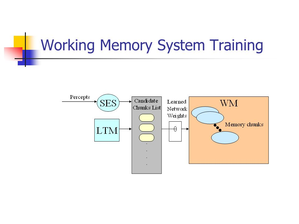 Working Memory System Training