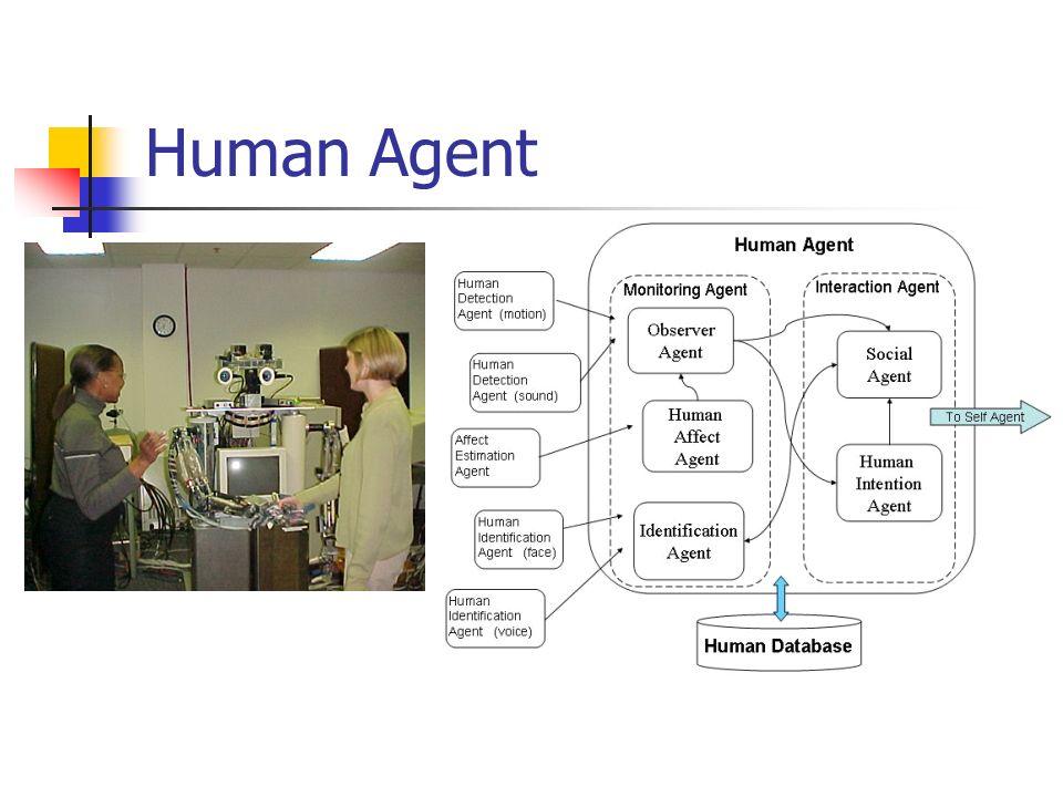 Human Agent
