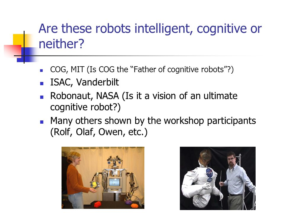 Are these robots intelligent, cognitive or neither