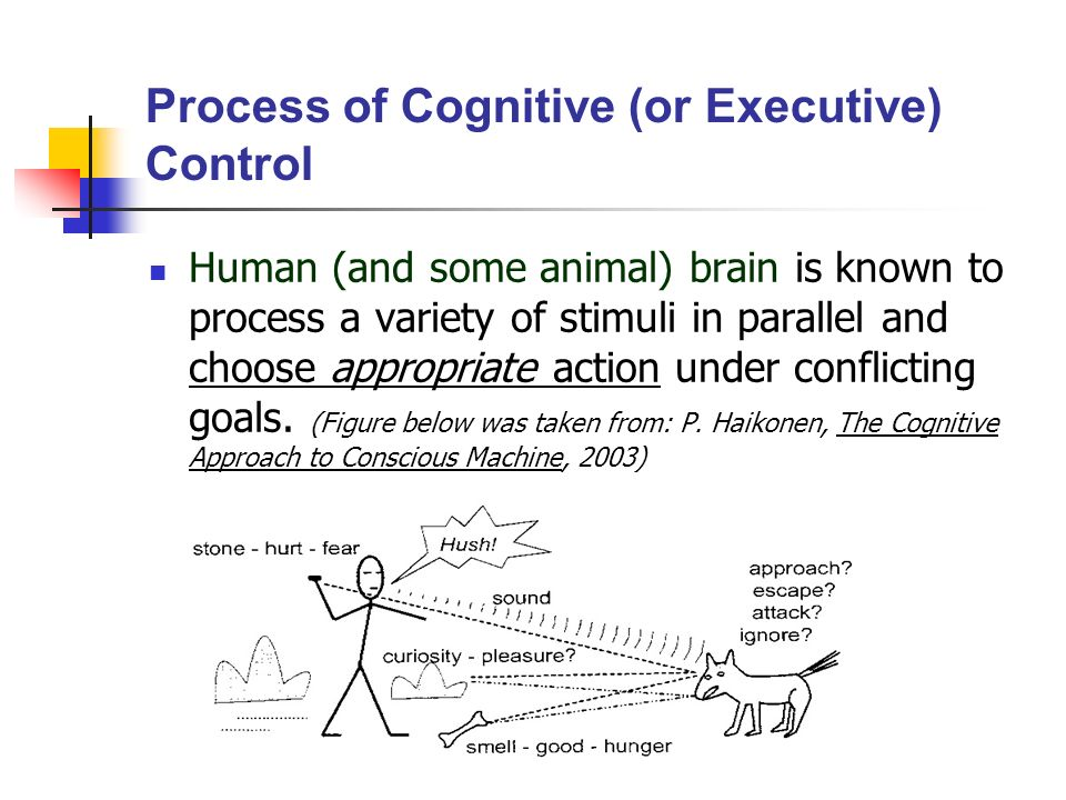 Process of Cognitive (or Executive) Control