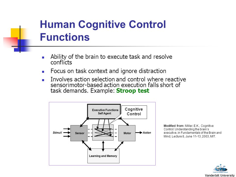 interference on automatic and controlled cognitive processing tasks psychology essay This theory of controlled inhibition is one example from a class of inhibition   although interference within the recovery process was not previously needed   to the extent that this automatic sampling happens, the newly learned  original  cue recall accuracy by memory strength and suppression task  results  summary.