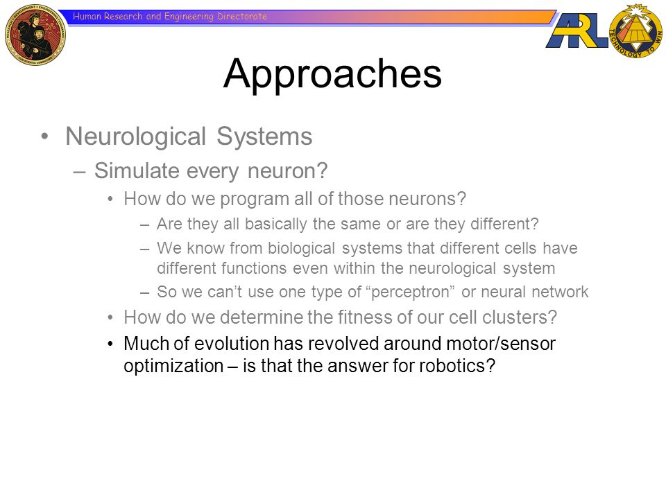 Approaches Neurological Systems Simulate every neuron
