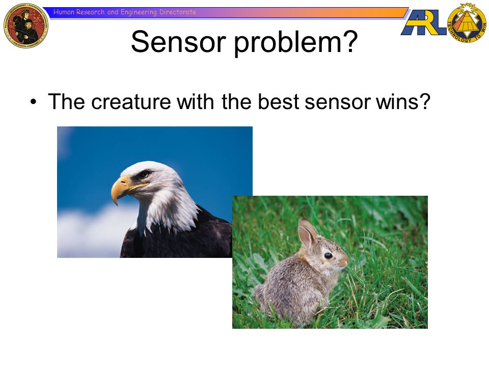 Sensor problem The creature with the best sensor wins