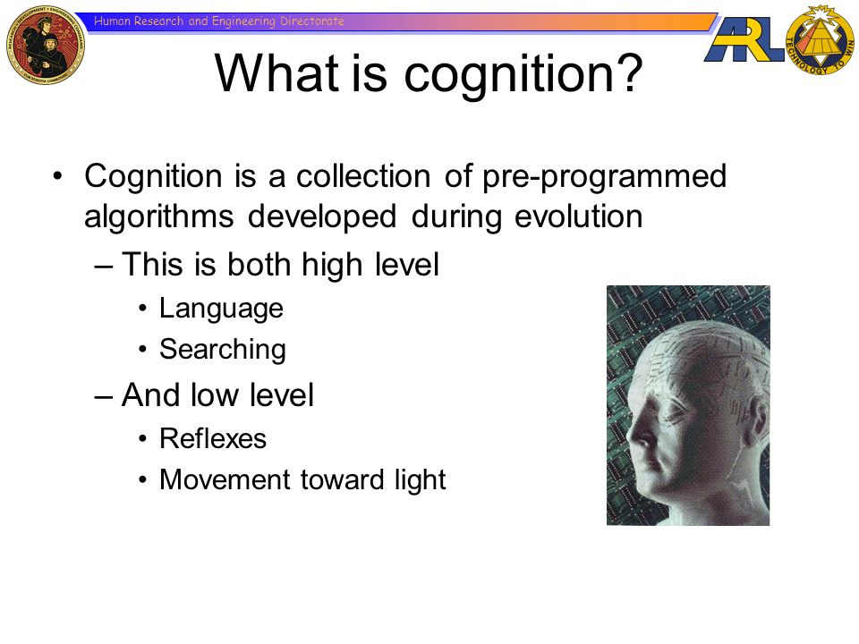What is cognition Cognition is a collection of pre-programmed algorithms developed during evolution.