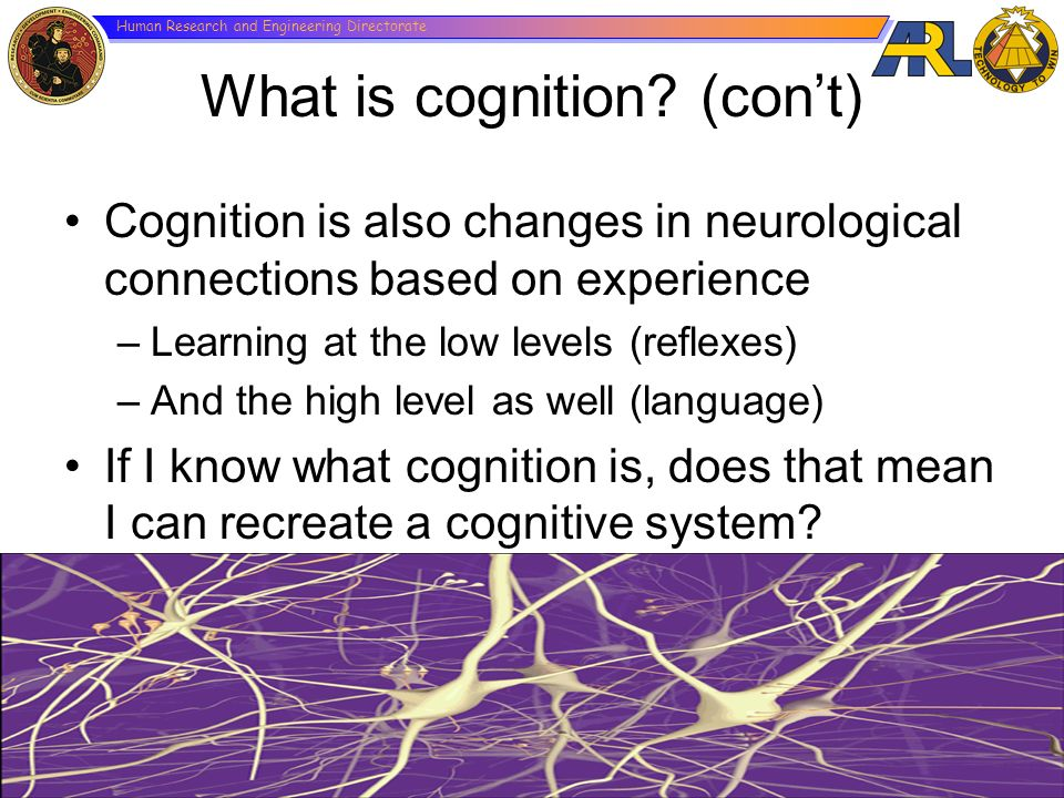What is cognition (con't)