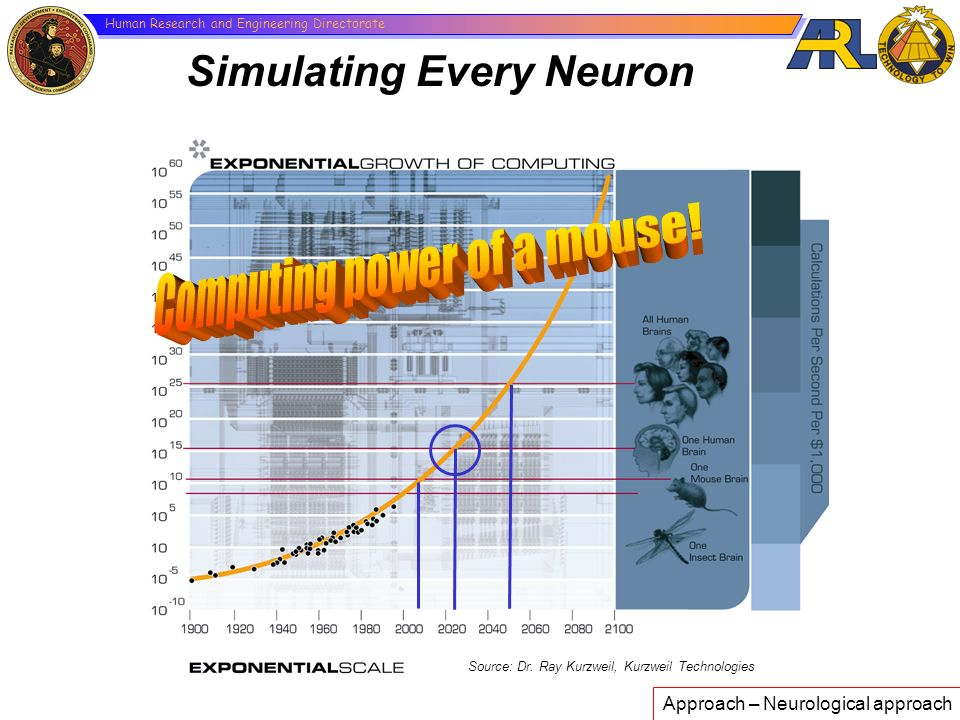 Computing power of a mouse!