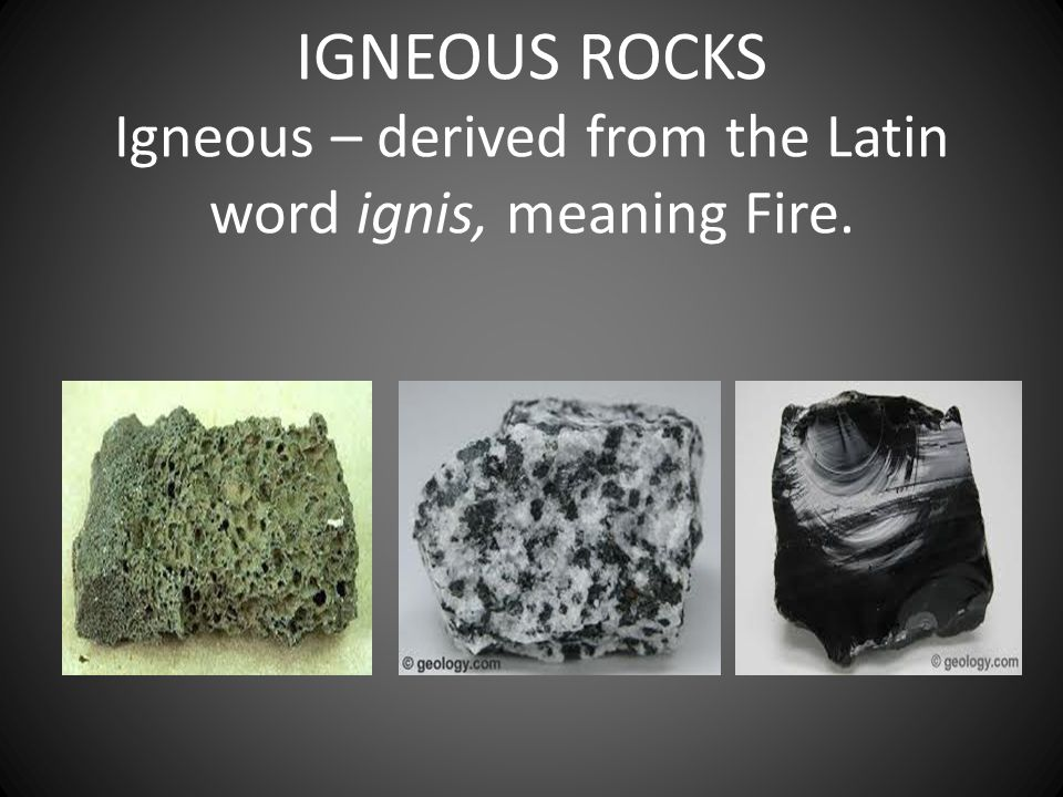 The Latin Word Meaning 84