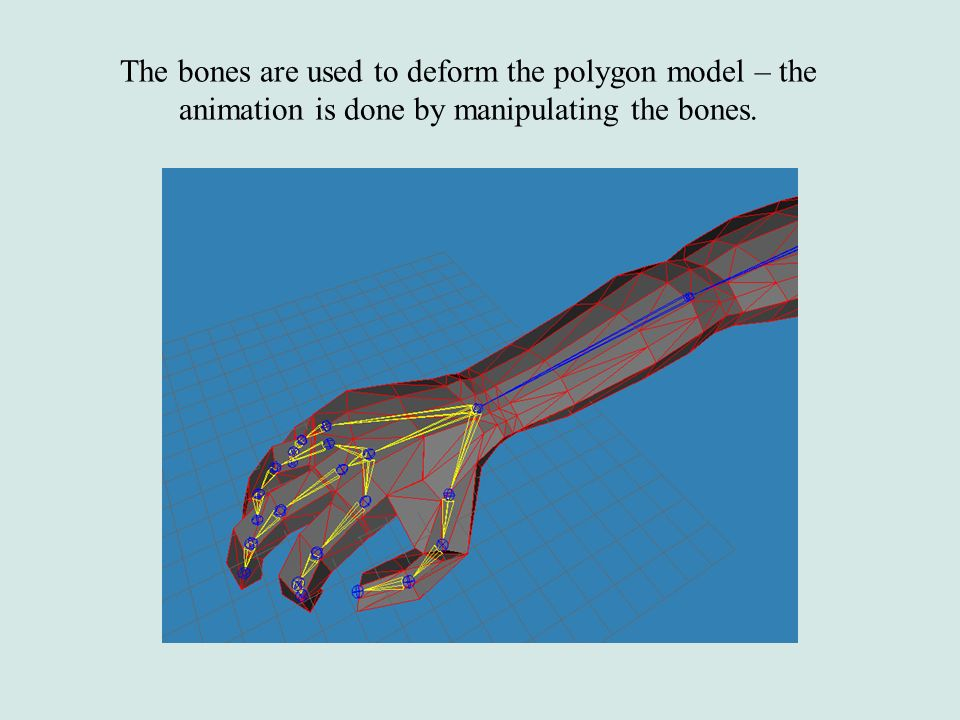 The bones are used to deform the polygon model – the animation is done by manipulating the bones.
