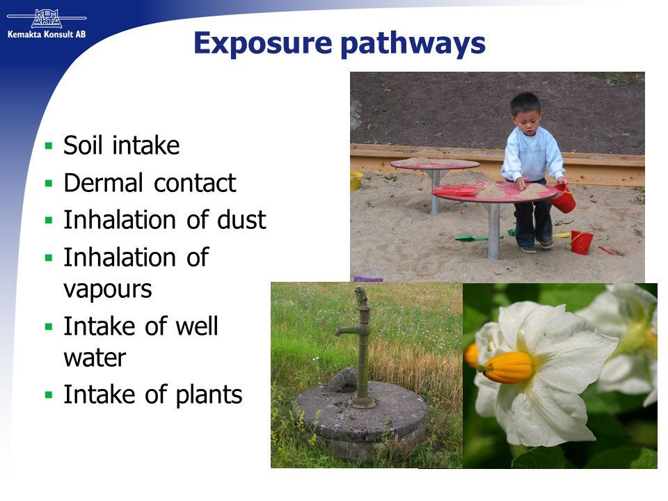 Exposure pathways Soil intake Dermal contact Inhalation of dust