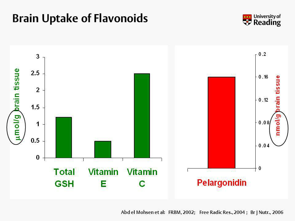 Brain Uptake of Flavonoids
