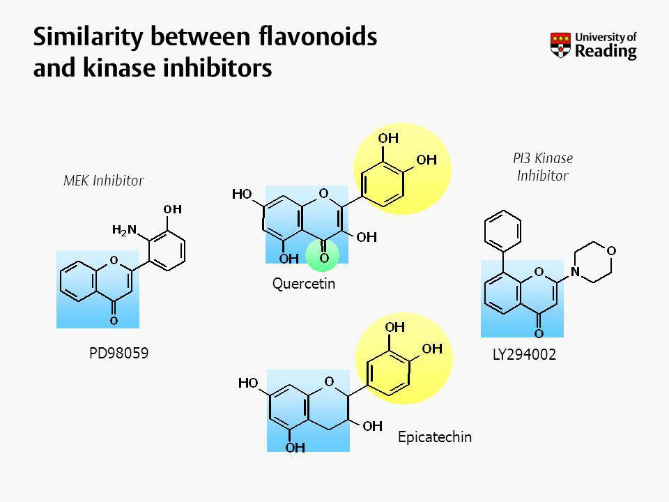 Similarity between flavonoids and kinase inhibitors