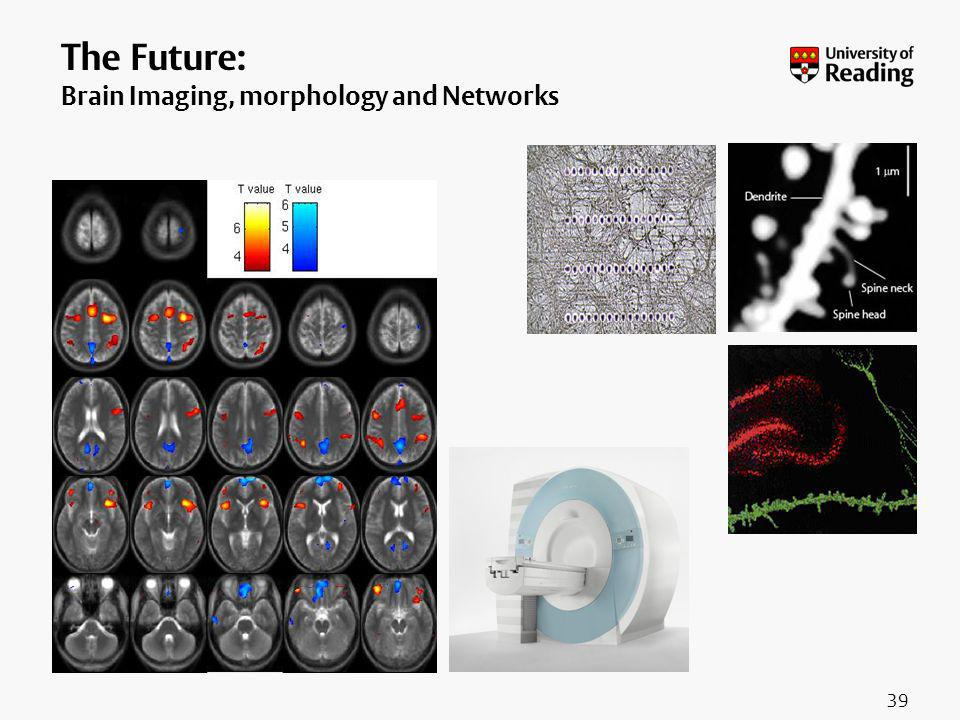 The Future: Brain Imaging, morphology and Networks