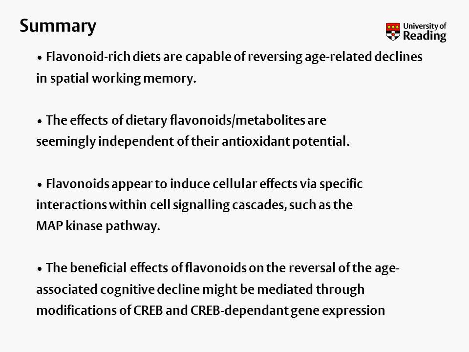 Summary Flavonoid-rich diets are capable of reversing age-related declines in spatial working memory.