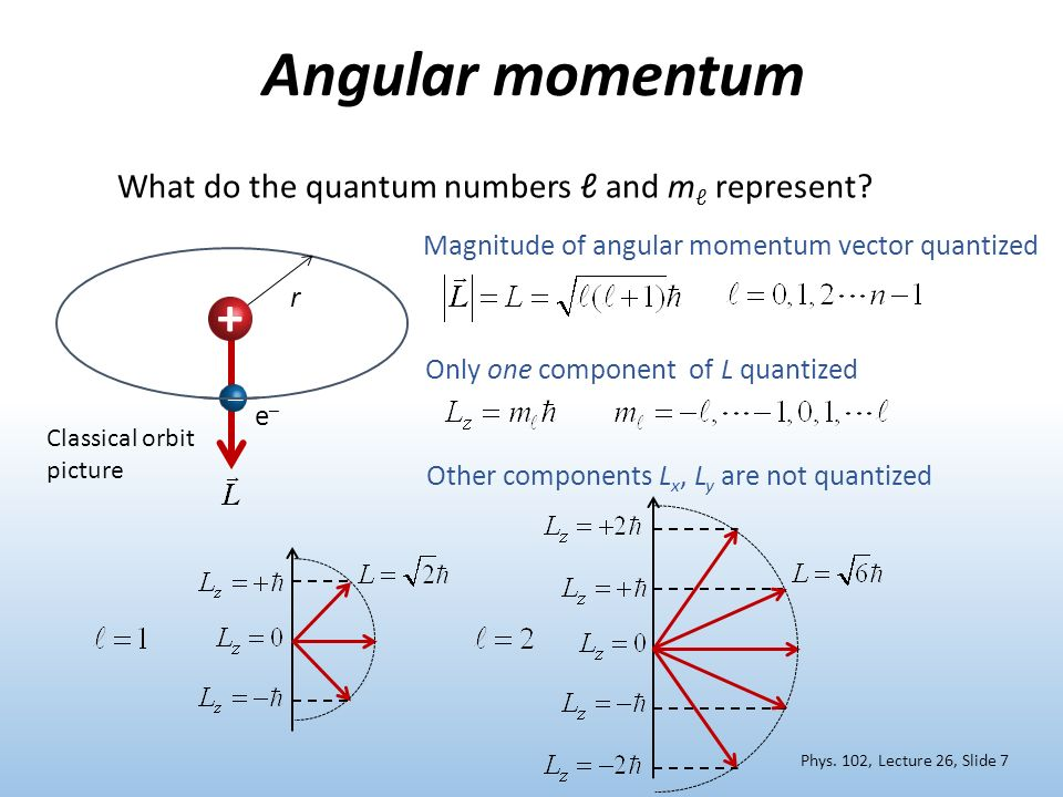 Angular momentum + What do the quantum numbers ℓ and mℓ represent