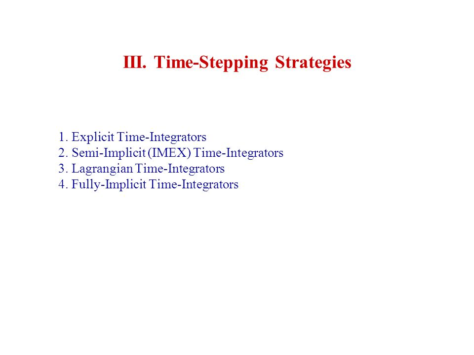 III. Time-Stepping Strategies