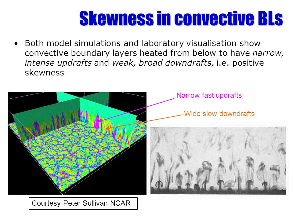Skewness in convective BLs