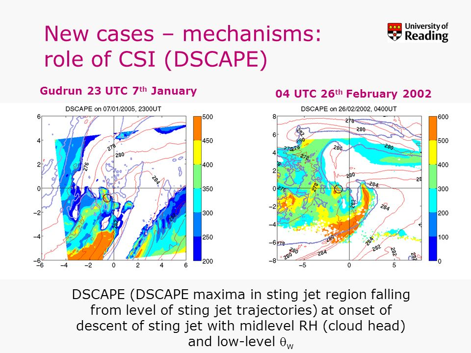 New cases – mechanisms: role of CSI (DSCAPE)