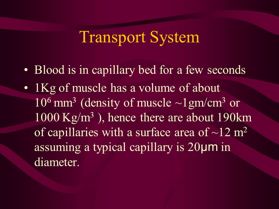 Transport System Blood is in capillary bed for a few seconds