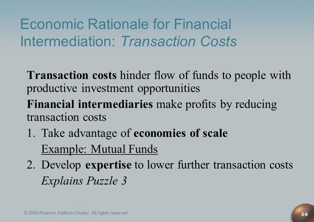 Economic Rationale for Financial Intermediation: Transaction Costs