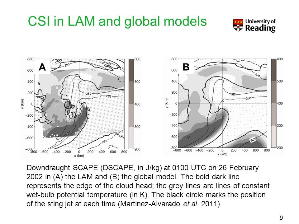 CSI in LAM and global models