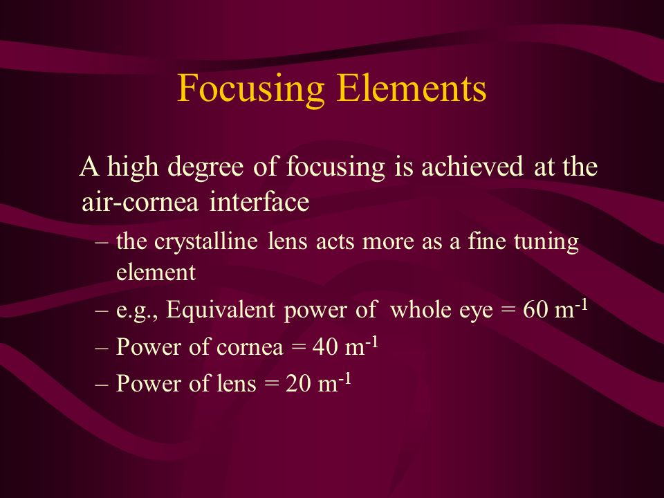 Focusing Elements A high degree of focusing is achieved at the air-cornea interface. the crystalline lens acts more as a fine tuning element.