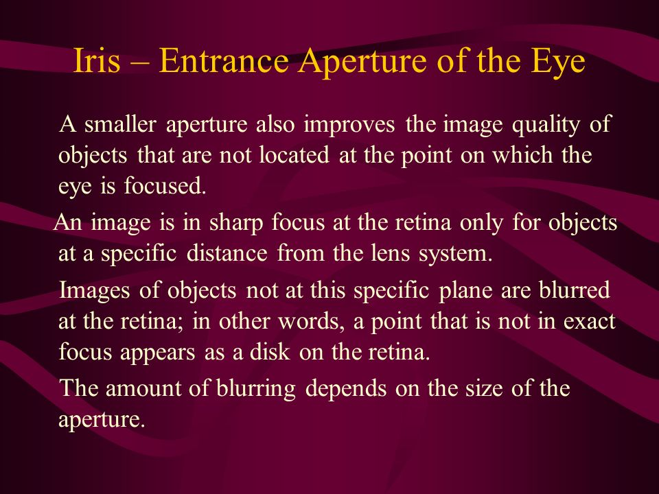 Iris – Entrance Aperture of the Eye