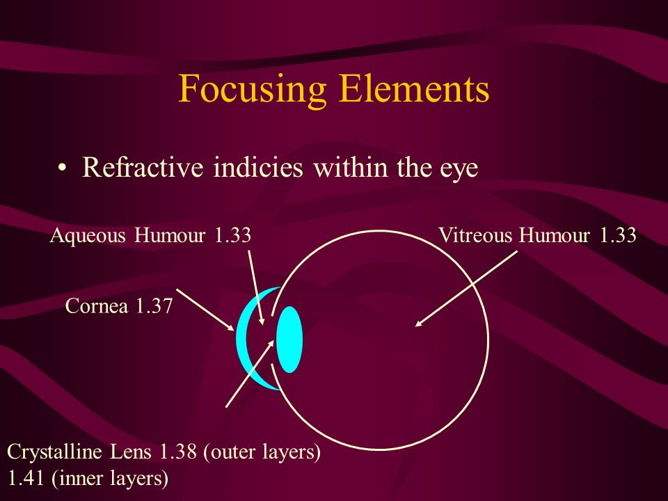 Focusing Elements Refractive indicies within the eye