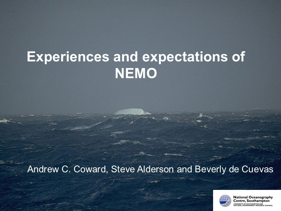 Experiences and expectations of NEMO