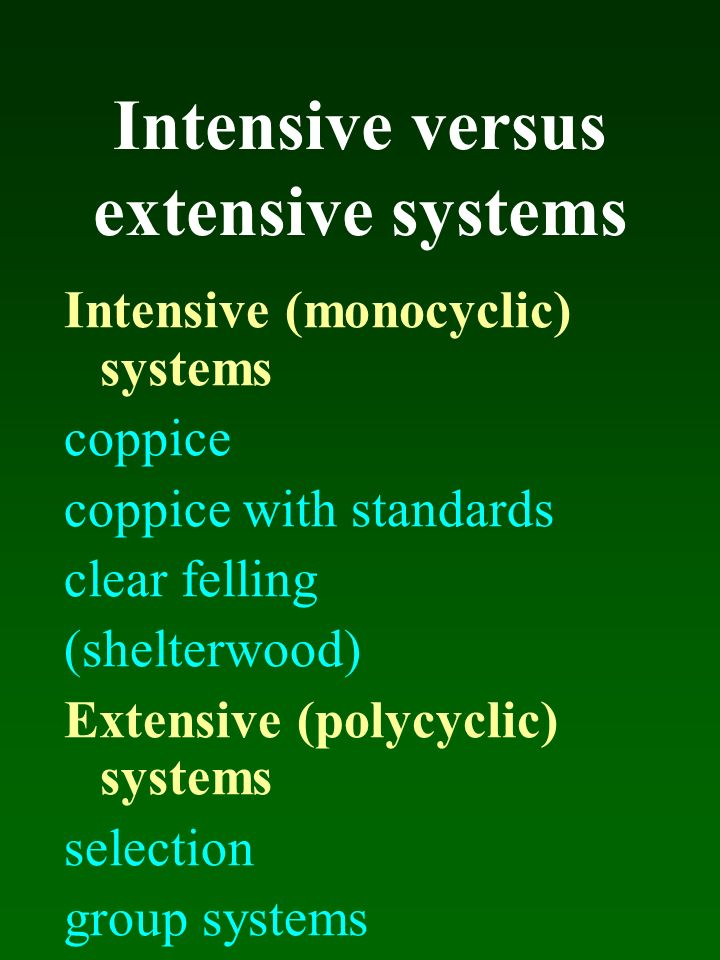 Intensive versus extensive systems