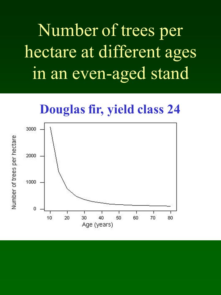 Number of trees per hectare at different ages in an even-aged stand