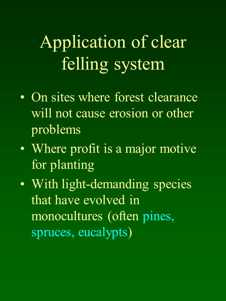 Application of clear felling system