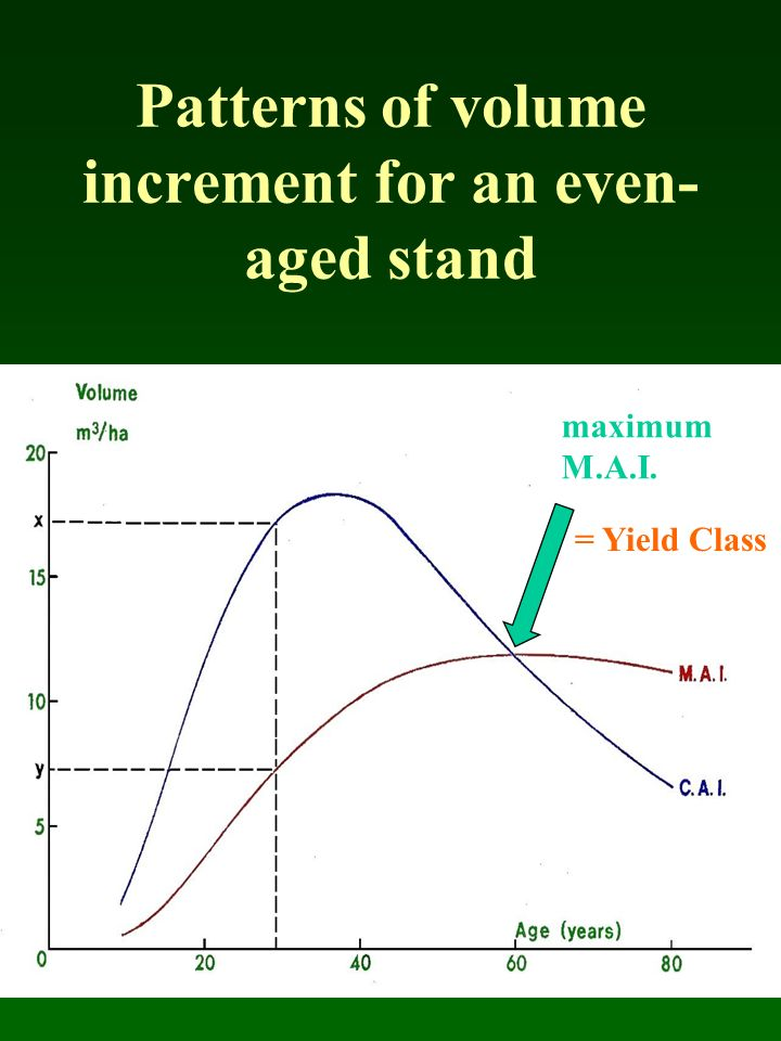 Patterns of volume increment for an even-aged stand