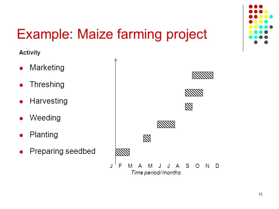 Example: Maize farming project