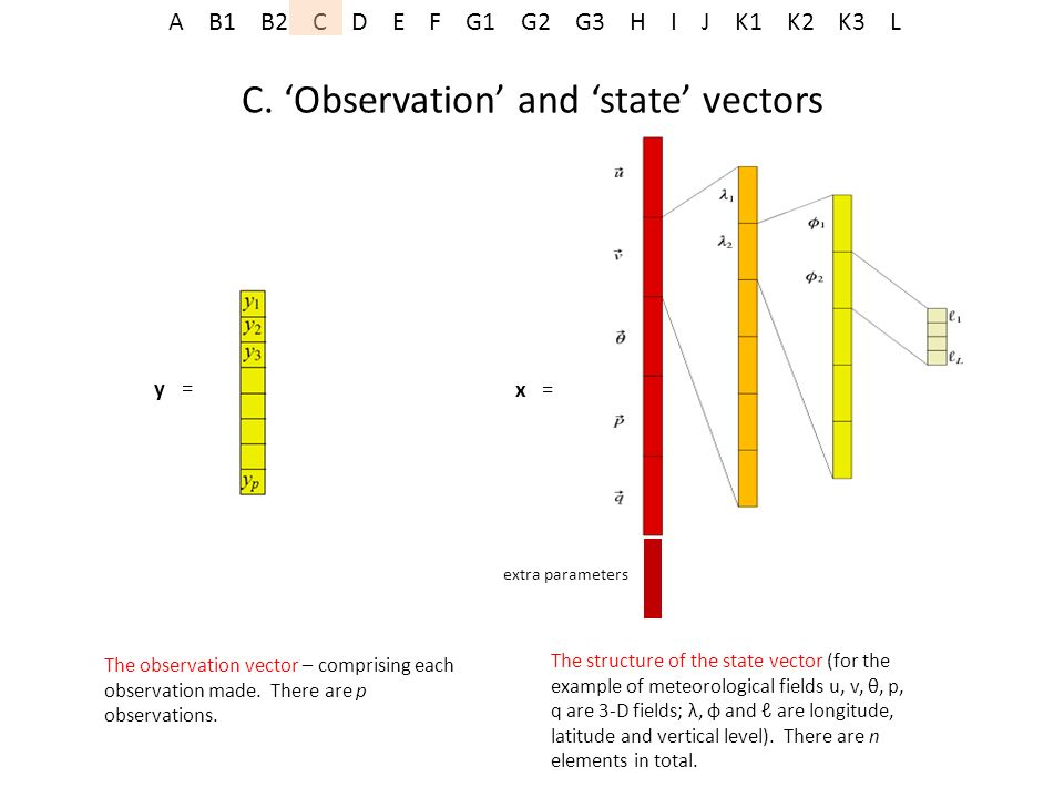 C. 'Observation' and 'state' vectors