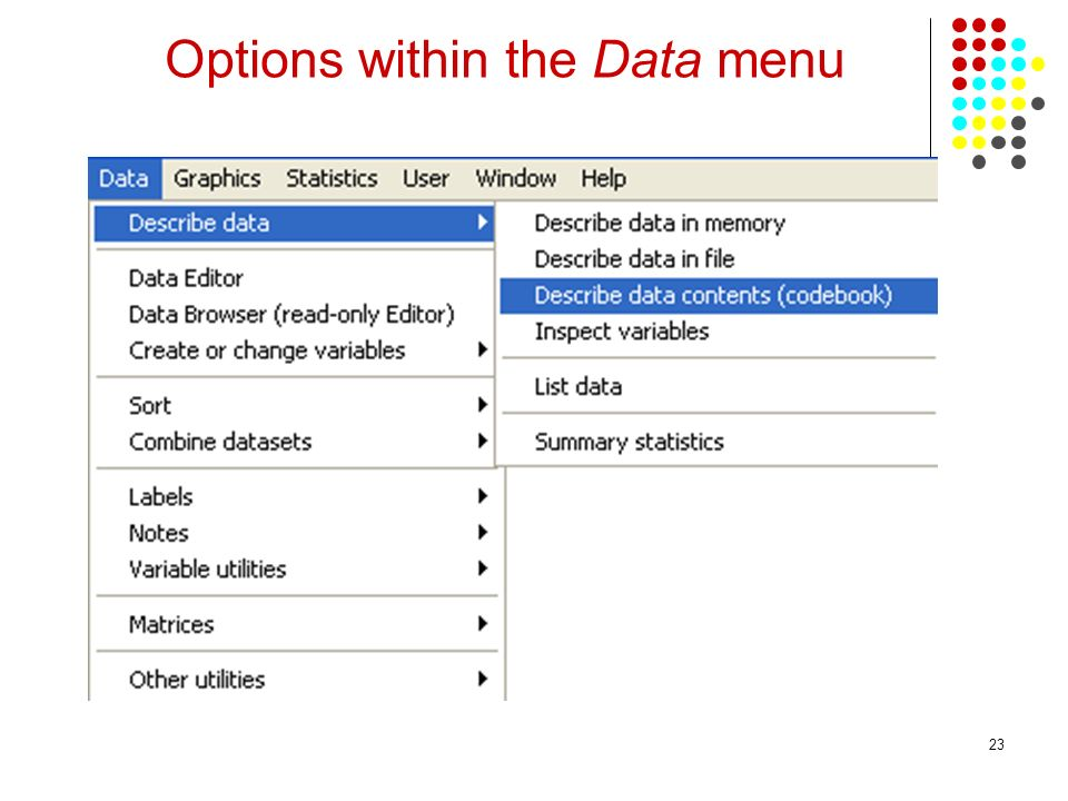 Options within the Data menu