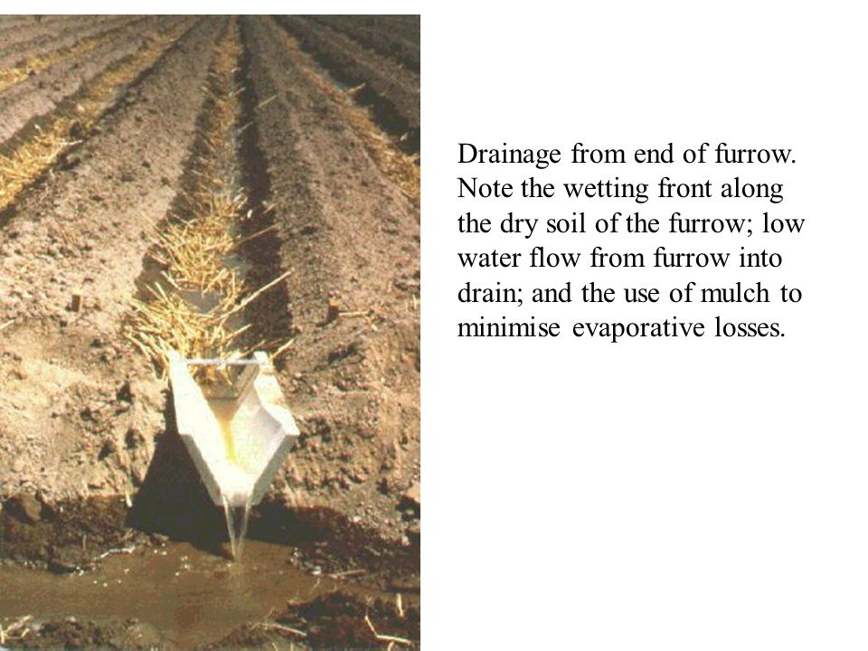 Drainage from end of furrow