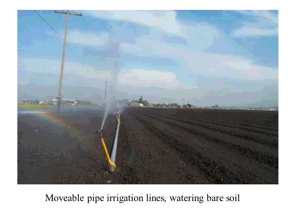 Moveable pipe irrigation lines, watering bare soil