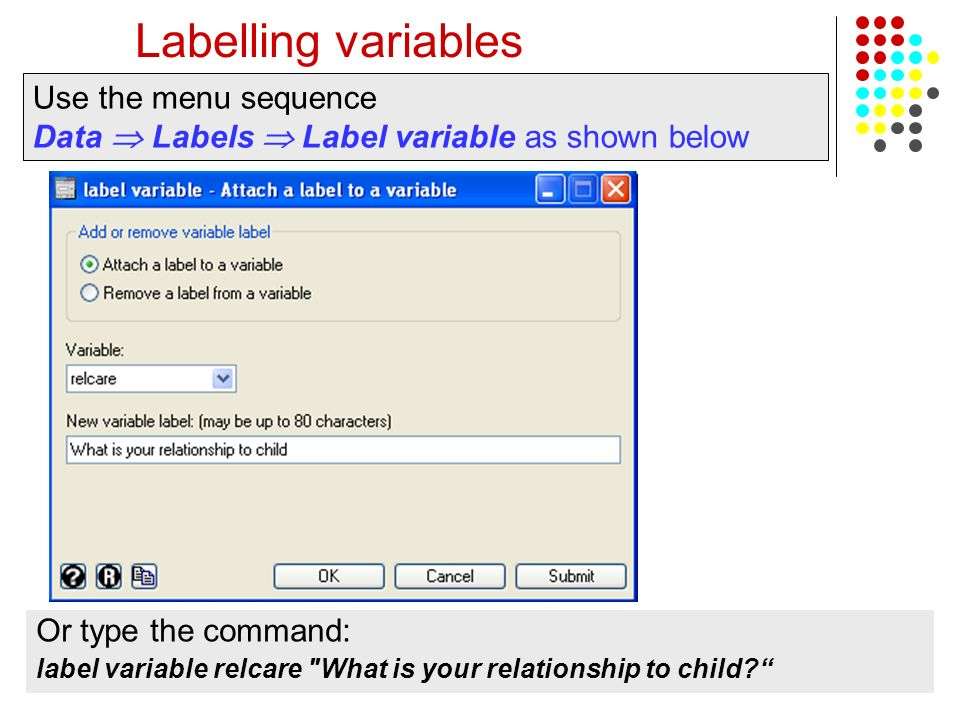 Labelling variables Use the menu sequence