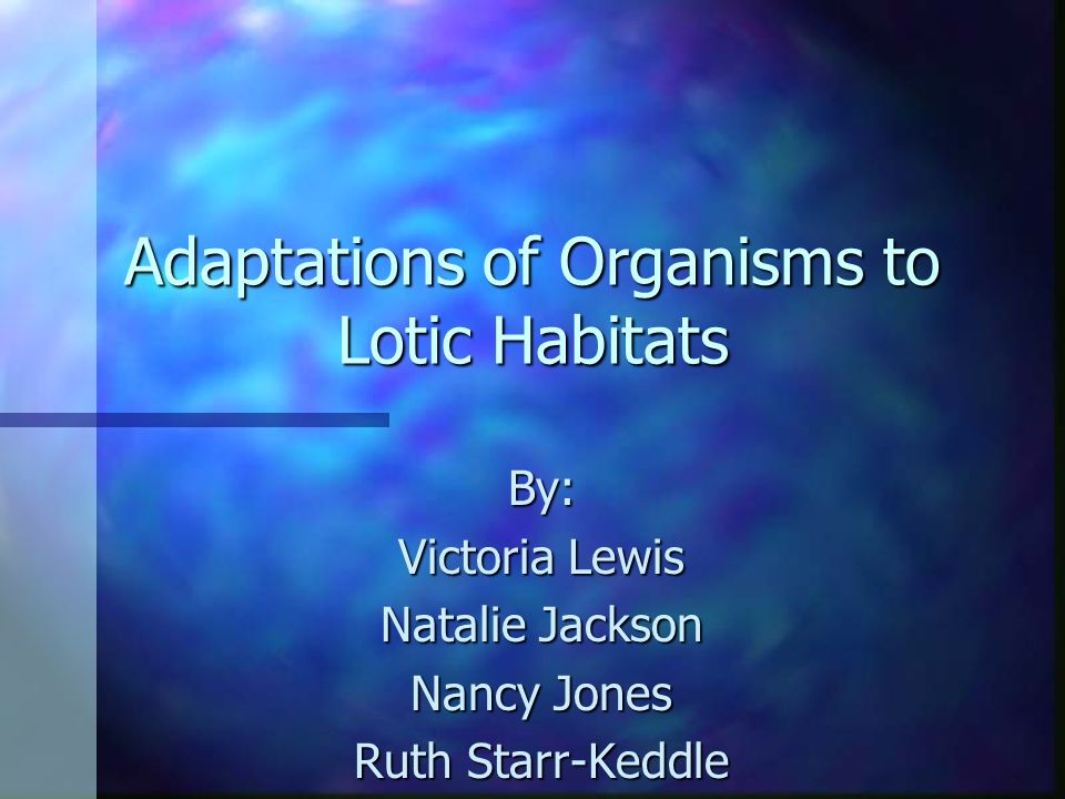 Adaptations of Organisms to Lotic Habitats