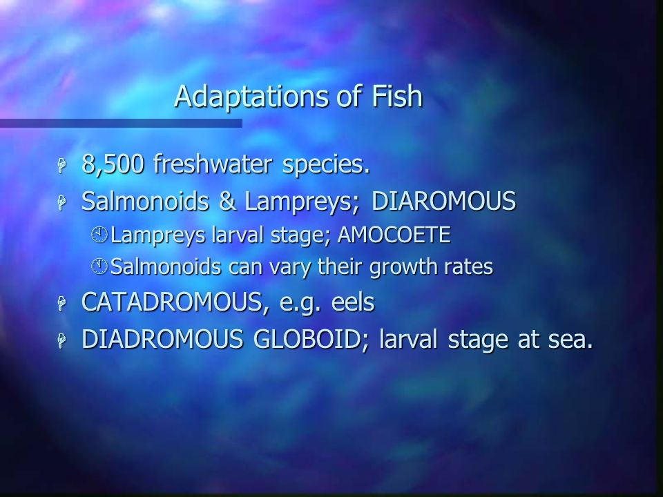 Adaptations of Fish 8,500 freshwater species.