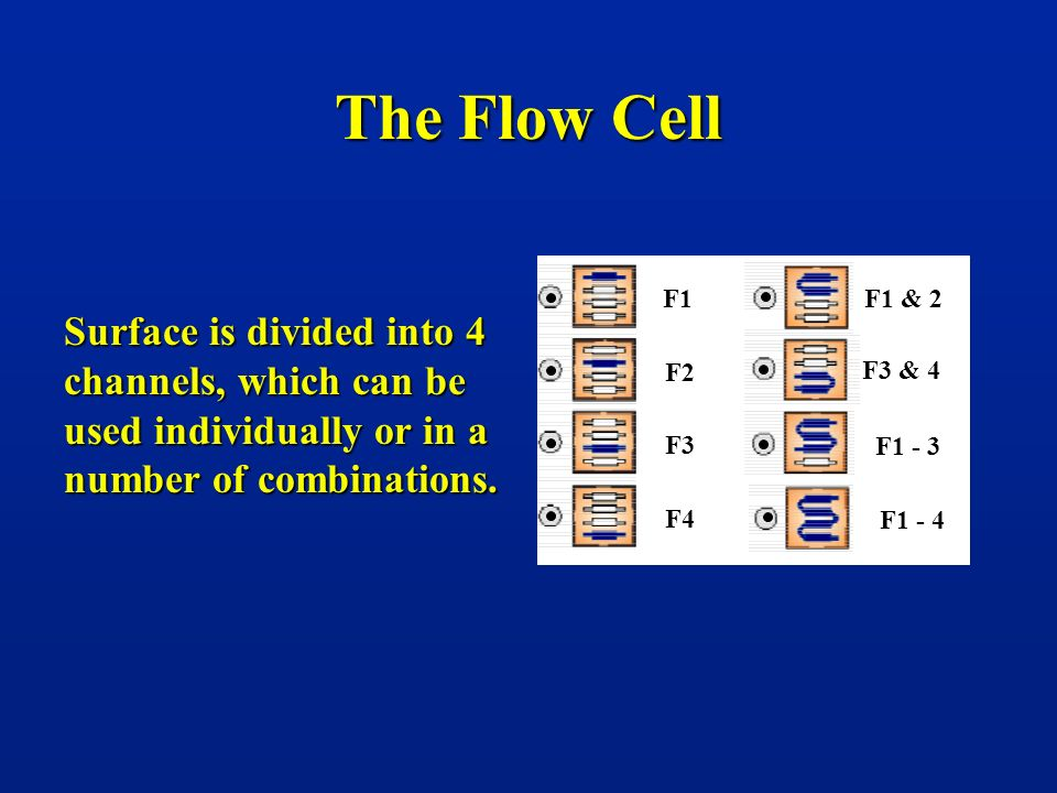 The Flow Cell F1. F2. F3. F4. F1 & 2. F3 & 4. F1 - 3. F1 - 4.