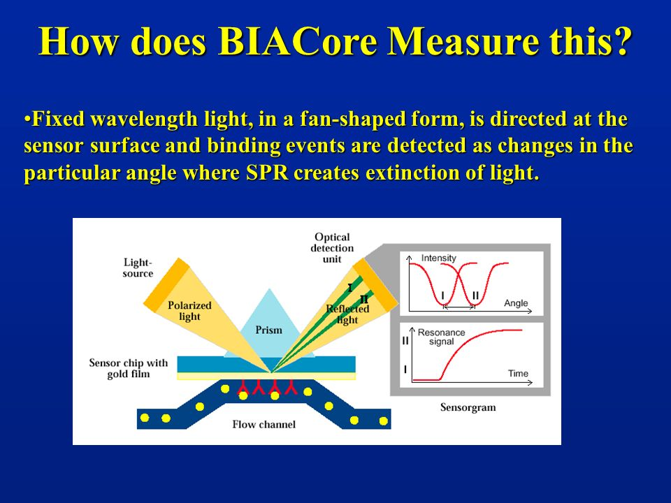 How does BIACore Measure this